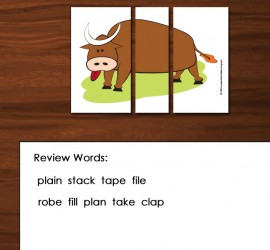 Keep the Silly Bull parts out during review words.