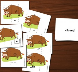 Silly Bull Syllable Type Cards