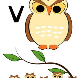 Help students remember vowels with v-owls.